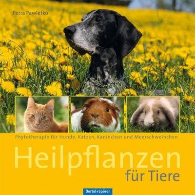Heilpflanzen für Tiere